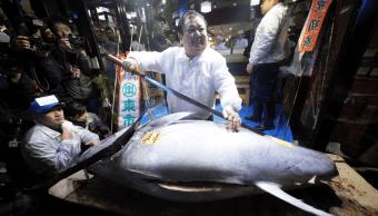 Venden un atún rojo por 323 mil 300 dólares en Japón