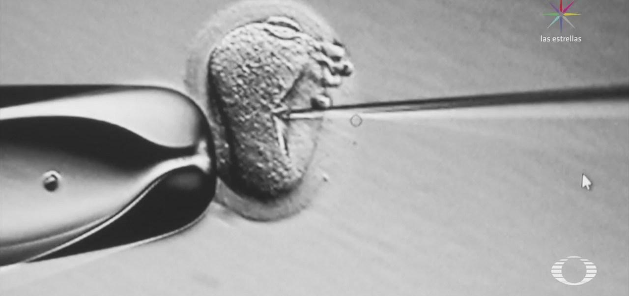 Científicos logran madurar óvulos humanos en laboratorio