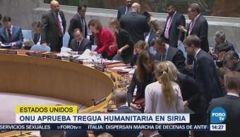 Consejo Seguridad Onu Pide Tregua 30 Días Siria