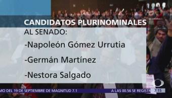 Consejo Nacional de Morena define candidatos plurinominales al Congreso