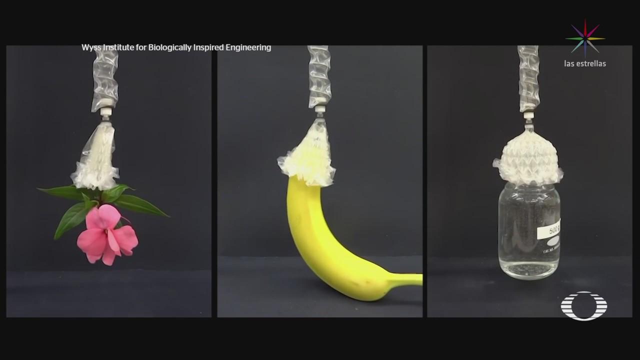 Desarrollan músculo de origami