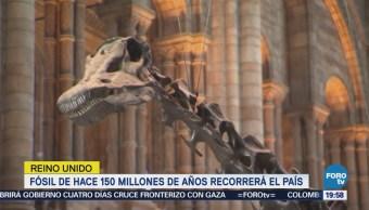 Exhibirán Dinosaurio Reino Unido