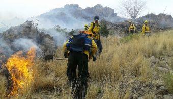 Reportan primeros incendios forestales del año en Sonora