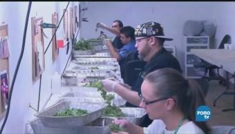 Marihuana, la industria que podría generar más empleos