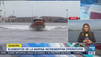 Marina Incrementa Operativos Combatir Delitos Mar Cortés