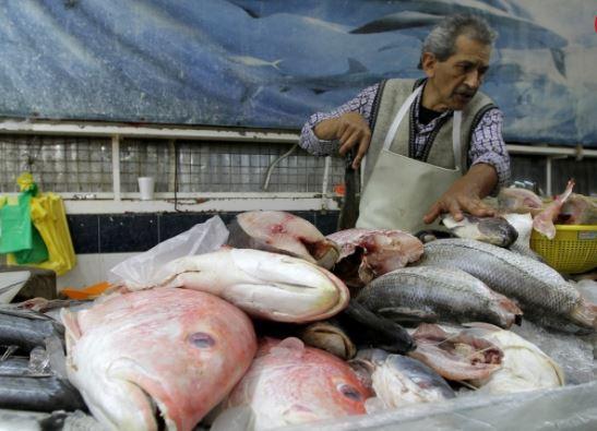 Hidalgo garantiza producción y calidad de pescado durante la época de cuaresma