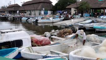 Darán seguro de vida a pescadores de Campeche