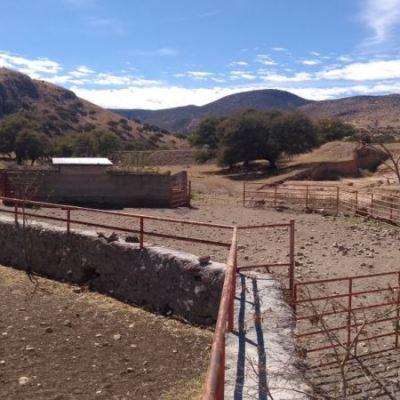 Javier Corral reitera petición para extradición de César Duarte; aseguran 4 ranchos