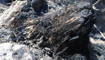 restos-quemados-campesino-guerrero-quema-esposa-hiere-hijas-menores-de-edad