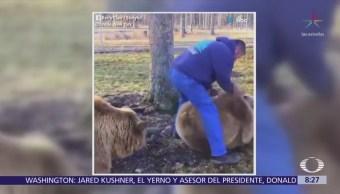 Un hombre juega con dos osos gigantes