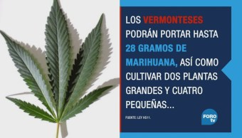 Vermont Legaliza Consumo Cultivo Marihuana