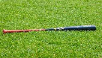 adolescente-16-mata-bate-beisbol-amigo-polk-florida