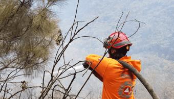 Apagan incendio forestal en Sierra de Santiago, Nuevo León