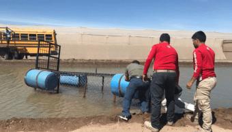Buscan a cocodrilo visto en canal de riego de Culiacán