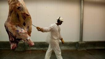 Estalla en Europa escándalo por venta de carne congelada hace 12 años