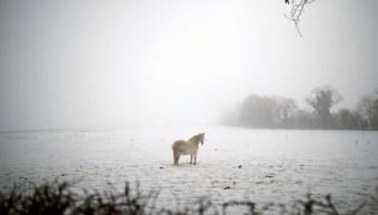 Al menos 50 muertos por ola de frío que azota a Europa