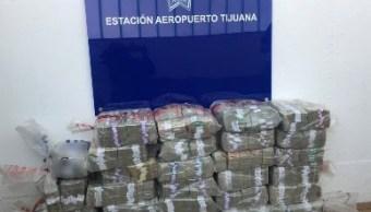 PF asegura más de 10 millones de dólares en Aeropuerto de Tijuana