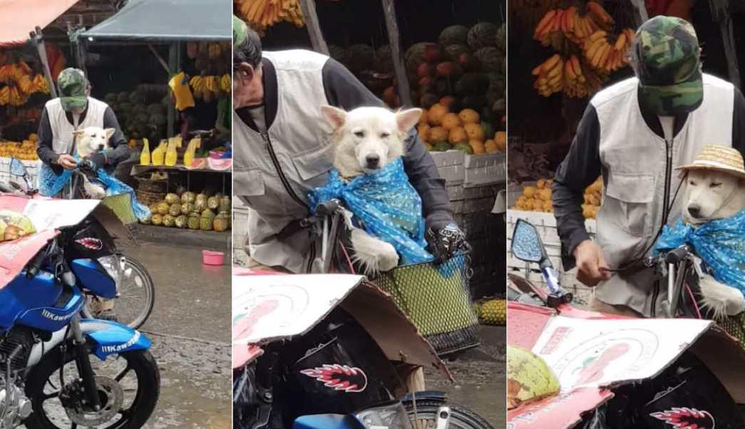 hombre-protege-perro-evita-moje-lluvia-sombrero-bicicleta-Filipinas