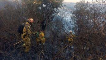 Incendios forestales afectan zonas serranas de Guanajuato