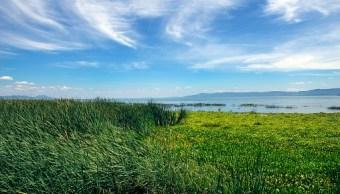 lago de chapala se encuentra en nivel adecuado