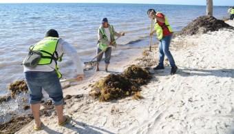 Limpian playas de Cancún para próximo periodo vacacional
