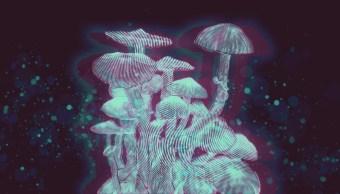 Quien-es-maria-sabina-hongos-alucinogenos