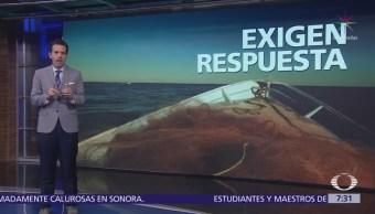 Pescadores de California no pescan para proteger a la vaquita marina, pero no reciben apoyo