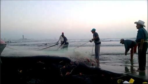 frentes frios afectan la actividad pesquera en veracruz