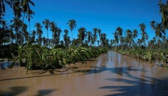 El cambio climático y sus efectos en la agricultura