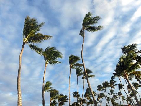 Pronostican vientos fuertes y bajas temperaturas para gran parte del país