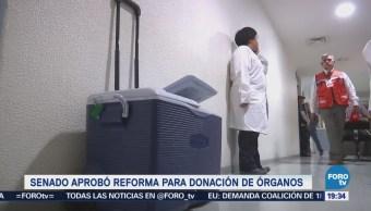 Aprueba Senado Reforma Donación Órganos