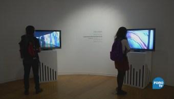 Centro Nacional Artes Tecnología Arte Exposición