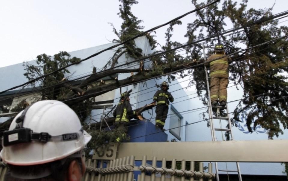 La fuerte tormenta acompañada de granizo del sábado en la capital del país deja cinco heridos y 12 árboles caídos, reporta Protección Civil CDMX