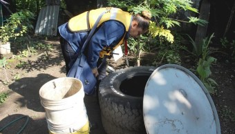 En alerta la Secretaría de Salud de Colima por dengue