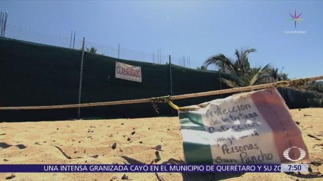 Construcción amenaza ecosistemas de San Pancho, en la Riviera de Nayarit