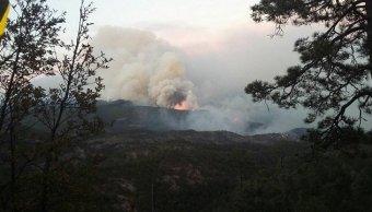 Autoridades combaten incendio forestal en sierra de Chihuahua