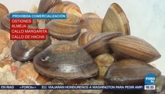 Colima Detectan Marea Roja Tóxica Manzanillo
