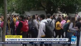 Estudiantes de la preparatoria 7 de Nuevo León sufren piquetes de abejas