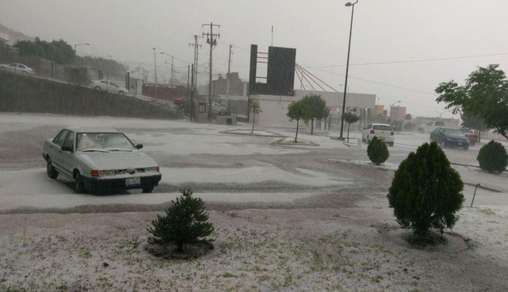 Granizada deja dos árboles caídos y afectaciones en Querétaro