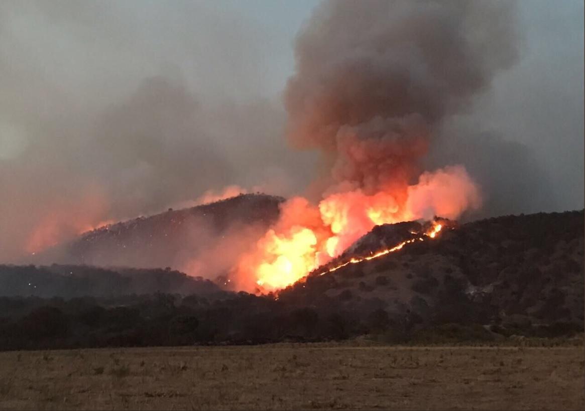 Suspenden clases en Tala por incendio en La Primavera