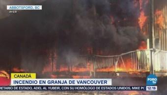 Incendio Granja Vancouver Canadá,