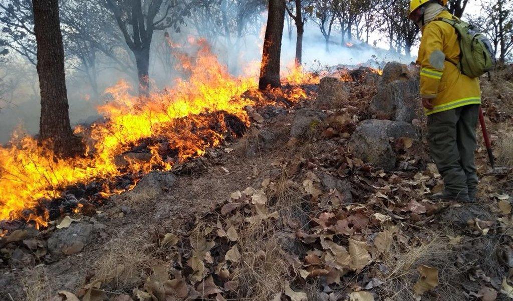 Suspenden clases en cuatro municipios de Jalisco por incendio forestal