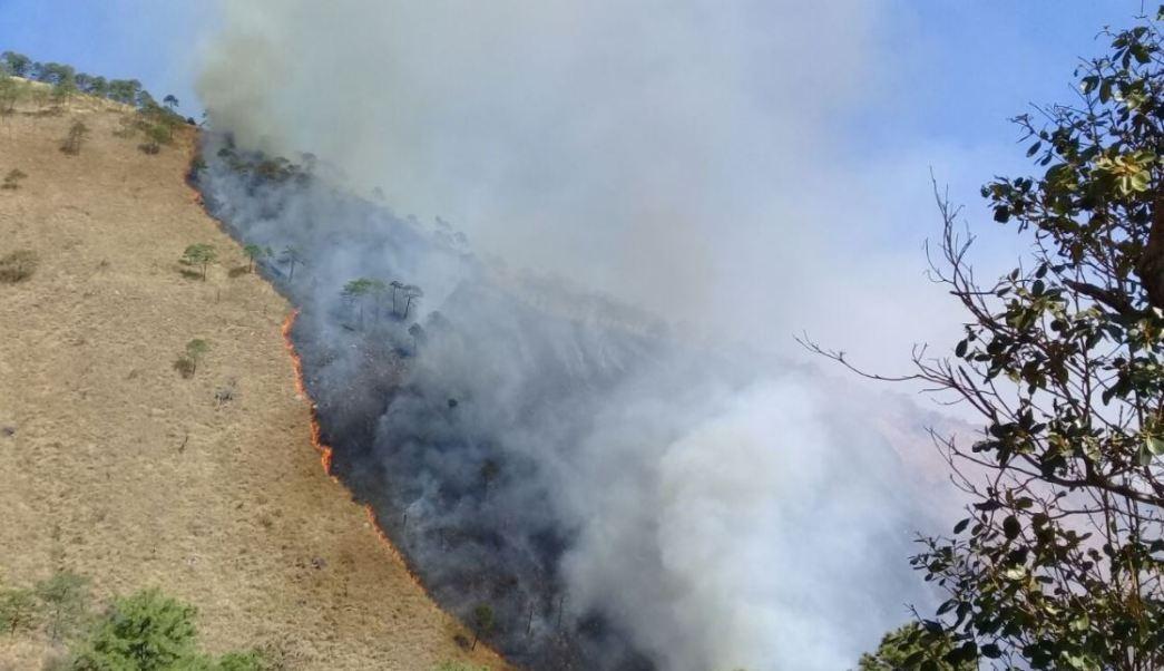 profepa denuncia incendio reserva ecologica