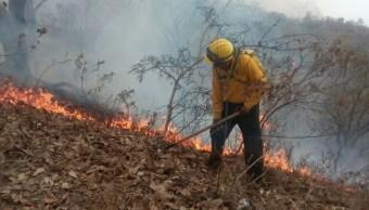 Incendios forestales consumen más de 3 mil hectáreas en Chiapas