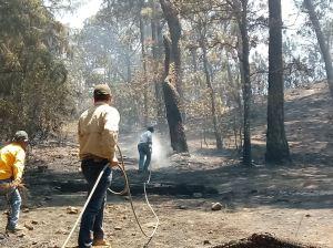 incendio forestal valle bravo medio ambiente