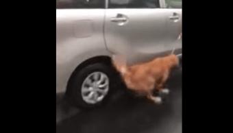 Amarran-perro-lo-arrastran-bajo-la-lluvia-puebla