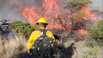 Suman 266 incendios forestales en Chiapas