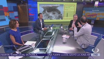 Despierta Con Cultura: Exposición La Historia Flor México
