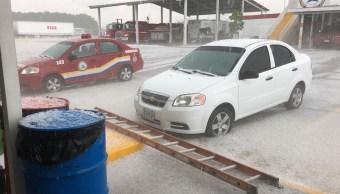 Reportan caída de árboles por lluvia y granizada Guadalajara Jalisco
