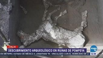 Hallan Restos Caballo Una Villa Pompeya